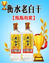 衡水米泸酒业有限公司