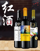 乐朗(天津)国际贸易有限公司
